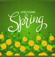 welcome spring words on flowers background vector image