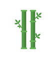 chinese sticks of bamboo tree with green leaves vector image