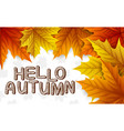 autumn leaves with lettering on white background vector image vector image