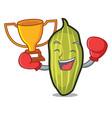 boxing winner cardamom mascot cartoon style vector image vector image