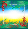 coconut leaves on frame vector image vector image