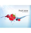 Fruit Juice Background vector image vector image