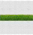 green grass background isolated transparent vector image vector image