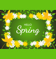 hello spring on flowers frame background vector image vector image