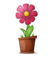 pot flower - cartoon vector image vector image