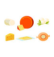delicious fresh cheese assortment various types vector image
