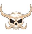 horned skull 001 vector image vector image