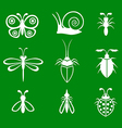 insect set green vector image