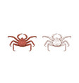 king crab set colorful and vector image