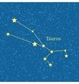 Night Sky with Taurus Constellation vector image