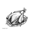 set hand drawn black and white turkey vector image