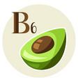 stylized avocado vector image