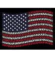 waving united states flag stylization of human vector image vector image