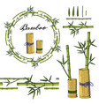 wreath and seamless brush from bamboo elements vector image vector image