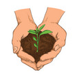 hand drawn ecology concept of plant growing vector image