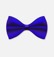 bow tie isolated on white vector image