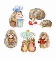 cute and funny hedgehogs cartoon animals vector image