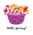 hello spring fresh colorful vector image