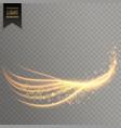 light streak with shimmer effect vector image vector image