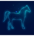 Silhouette Horse from Beautiful Bright Stars vector image vector image