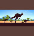 silhouette jumping wild animals kangaroo