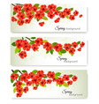 three nature spring banners with blossom of vector image