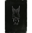 underwear body chalk vector image vector image