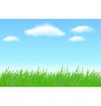 meadow grass vector image