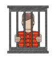 color blurred stripe of faceless man in jail vector image