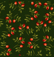 eglantine or dog rose seamless pattern on green vector image