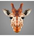 Giraffe low poly portrait vector image vector image