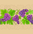 grapes horizontal pattern on color background vector image