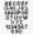 Gray geometric background abstract hexagonal vector image vector image