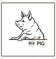 pig black and white vector image vector image