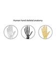 set of human hand skeleton vector image vector image