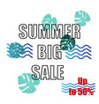 summer big sale design vector image