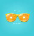 sunglasses with orange and mint background vector image