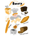 character cartoon baker or cook with dough vector image