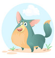 cute welsh corgi cartoon vector image vector image