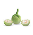 eggplant green fresh and cut half realistic vector image