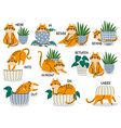 english prepositions educational visual material vector image vector image