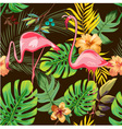 EXOTIC FLAMINGO PATTER BACKGROUND DESIGN vector image