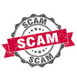 scam stamp sign seal vector image vector image