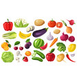 seasonal fruits and vegetables organic products vector image vector image