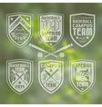 Baseball team emblem vector image vector image