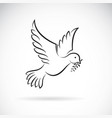 black dove of peace with olive branch on white vector image vector image