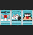 bowling balls and pins on alley vector image