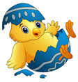 cute little cartoon chick hatched from an egg isol vector image vector image