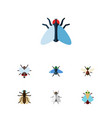 flat icon fly set of buzz mosquito bluebottle