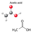 Formula and model of acetic acid molecule vector image vector image